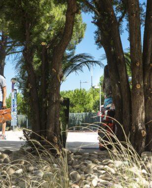 10 bonnes raisons de venir étudier à Montpellier